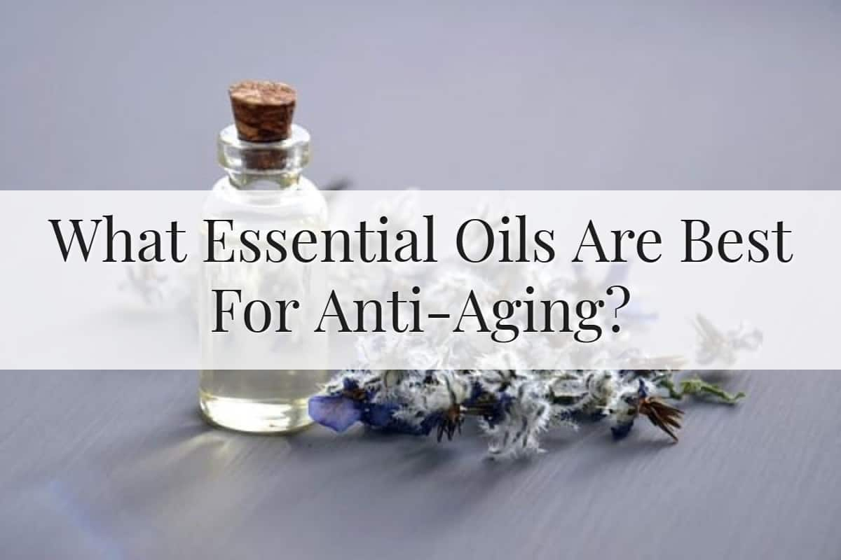 What Essential Oils Are Best For Anti-Aging Feature Image