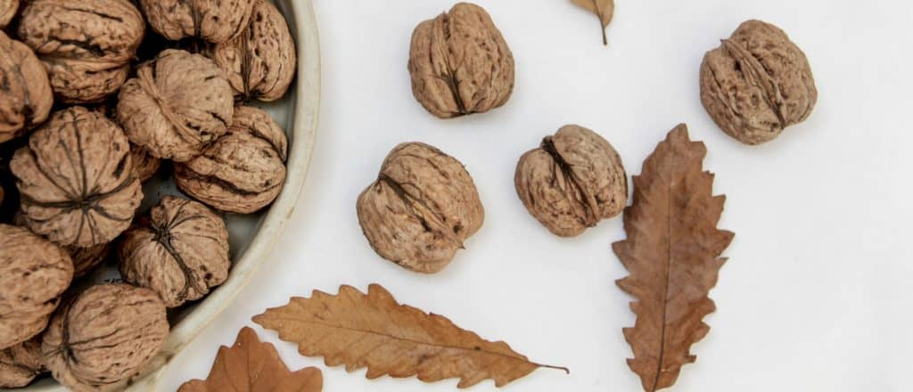 Walnut Scattered On The Table